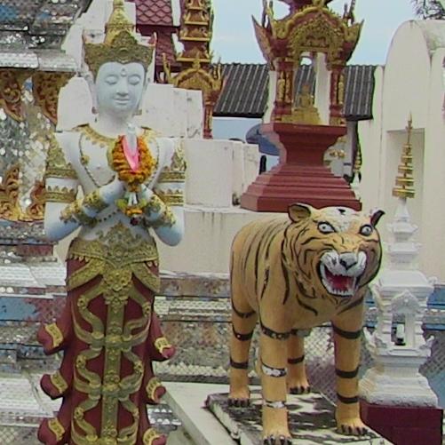 La Thaïlande et le bouddhisme sont indissociables. Dans le royaume, le bouddhisme theravada est une véritable institution, il est partout, et les superstitions perdurent.