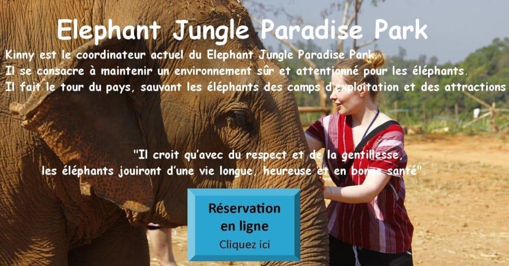 Eléphant Jungle Paradise Park Chiang Mai