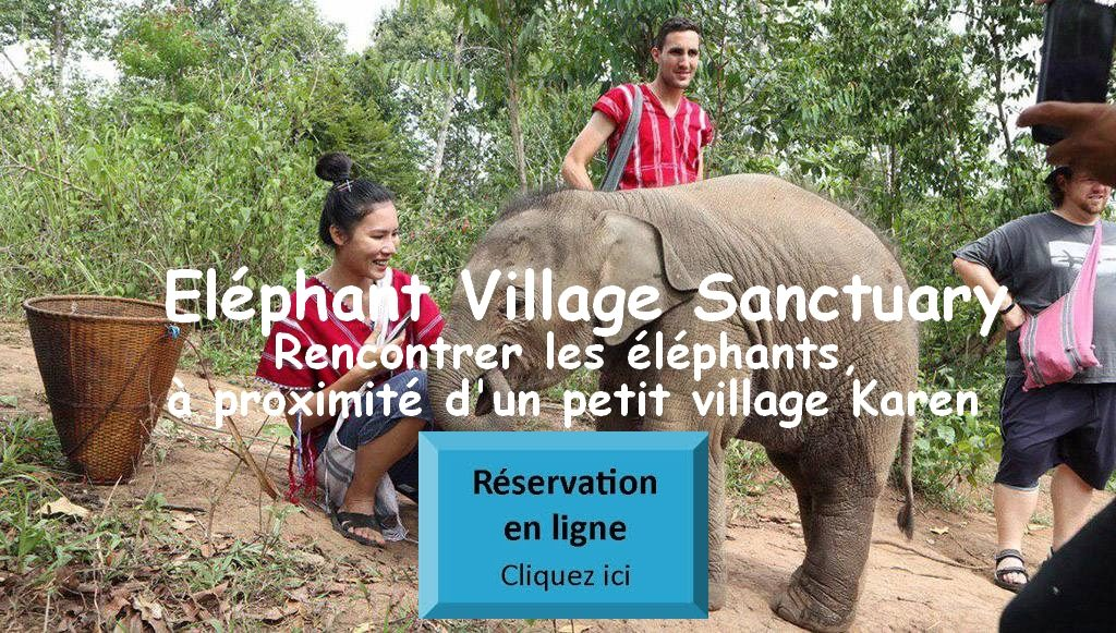 Eléphant Village Sanctuary Chiang Mai