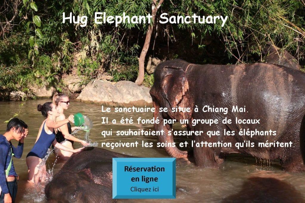 Hug Elephant Sanctuary Chiang Mai