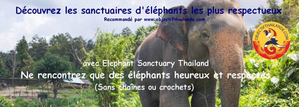 Les sanctuaires d'éléphants les plus respectueux en Thailande