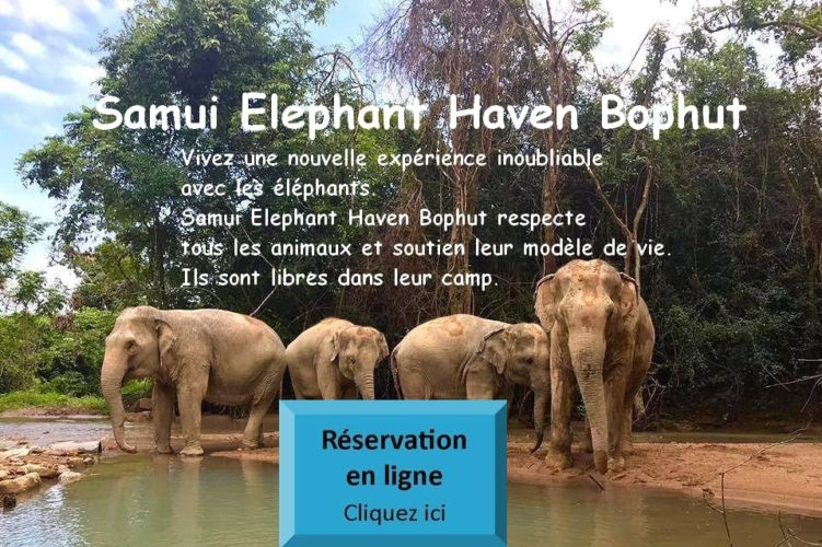 Samui Elephant Haven Bophut